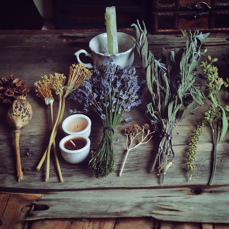cb110898ed81700b9862ab8a1c356396--herbal-magic-gypsy-witch